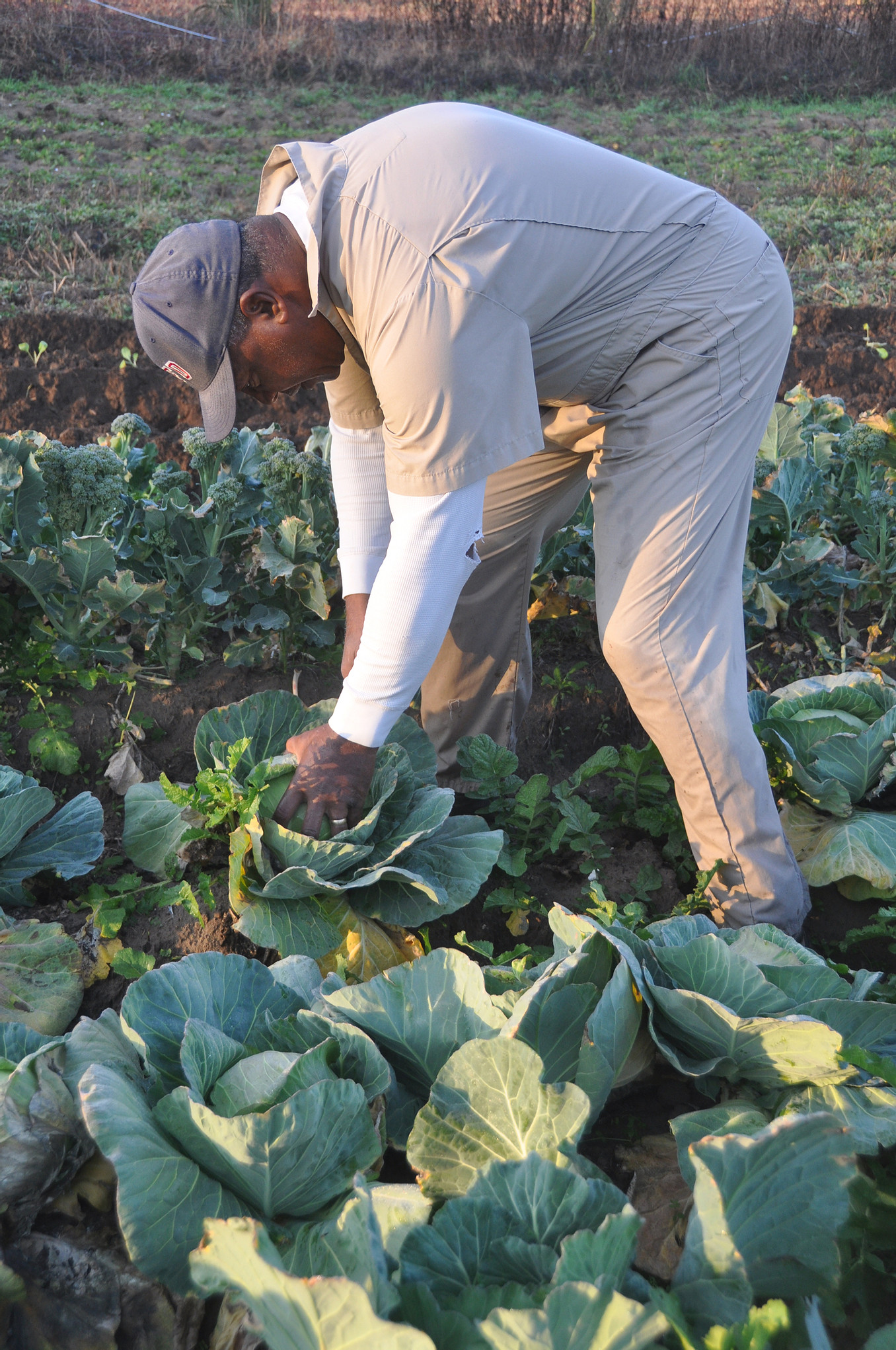Gullah Geechee Cooperative Builds with Food Safety Focus